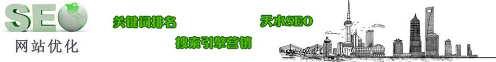 天水SEO|天水网站优化